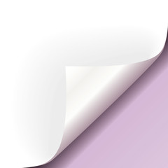 Papier Ecke lila rechts unten
