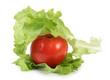 Salad and tomatos