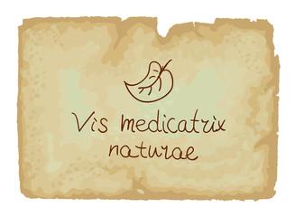 Vis medicatrix naturae - Each person's inner healing power