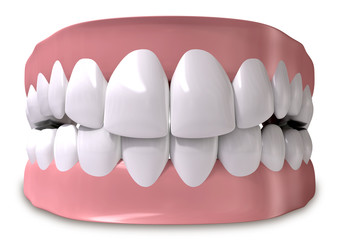 Teeth And Gums Closed