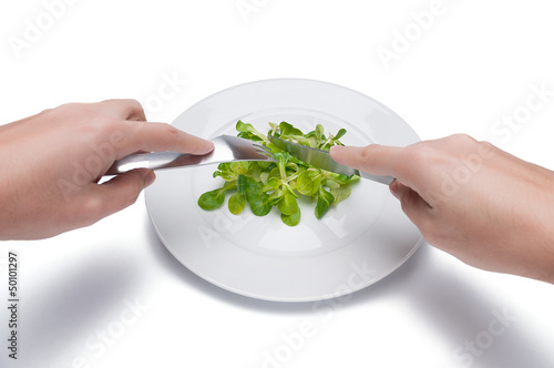 bird salad on a plate, extreme dieting, isolated