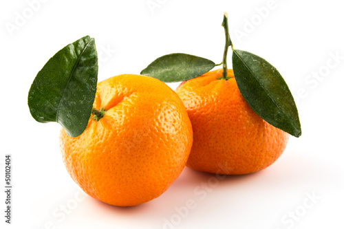 canvas print picture two_clementines