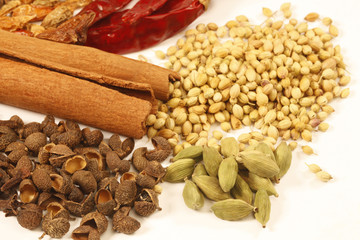 Variety of raw Indian Spices