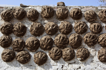 dung cakes with hand print