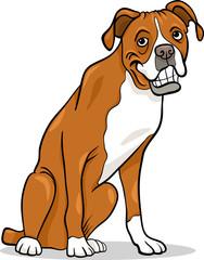 boxer purebred dog cartoon illustration