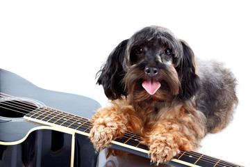 Small decorative doggie and guitar.