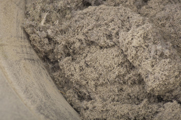 a group of house dust close up shot