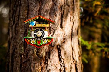 Kuckucksuhr im Wald