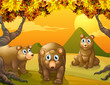 Three brown bears