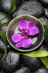 bowl with pink orchid on wet stones