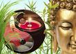 composition zen, Bouddha, Yin-yang, bambou