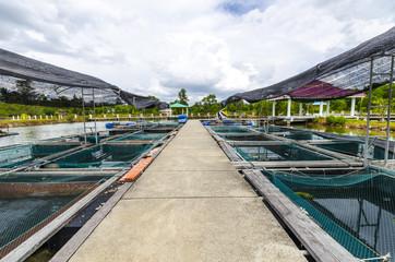 Fish farm in the province of Krabi. Thailand