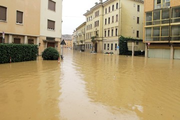 cars in the streets and roads submerged by the mud of the flood