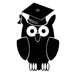 studied owl