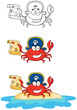Crab Pirate. Collection