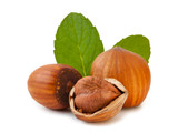 Hazelnuts with leaves_II