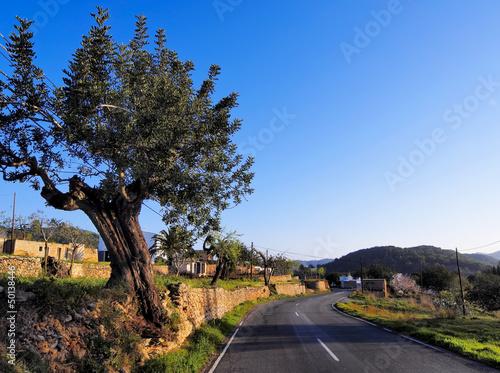 Ibiza Road, Balearic Islands, Spain