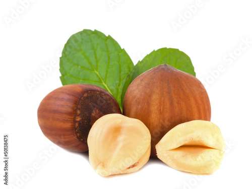 Hazelnuts with leaves_III