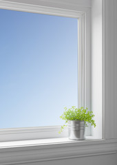 Green plant on a windowsill, with blue sky seen through the wind
