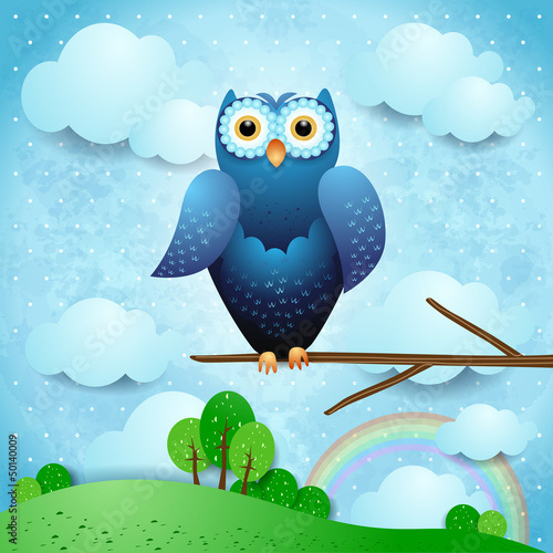 Owl and countryside