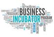 "Word Cloud ""Business Incubator"""