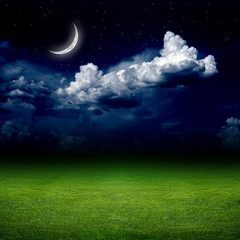Night, green field
