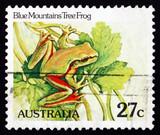 Postage stamp Australia 1981 Blue Mountains Tree Frog, Amphibian poster
