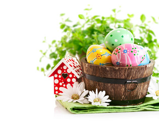 Easter eggs in the pot with green grass isolated on white