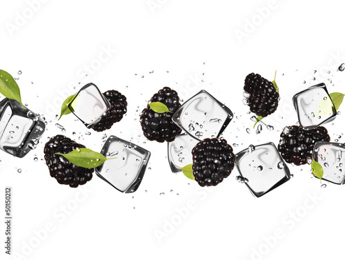 Poster In het ijs Blackberries with ice cubes, isolated on white background