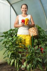 woman  picking   pepper