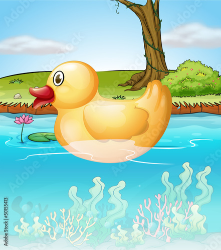 Poster Rivier, meer The yellow toy duck in the pond