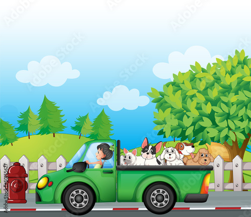 Foto op Canvas Boerderij A green car along the street with dogs at the back