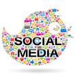 Social Media - Bird (I)