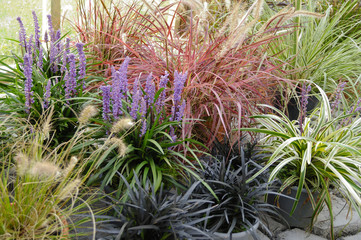 Steingarten mit exotischem Ziergras