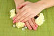 Woman hands with pink manicure and flowers,