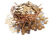 Nest full of coins isolated on white