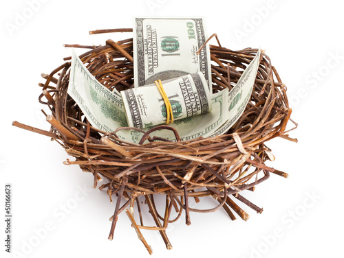 Dollar bills in a birds nest isolated on white
