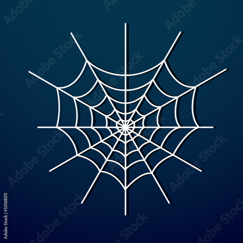 Vector spider web on dark background.