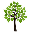 Stylized vector tree with green leafs. Element design - 50169611