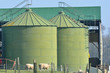 Green food storage silo