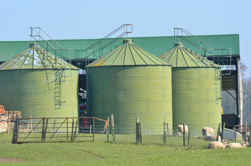 Metal green farm  silos