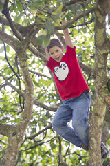 Hispanic boy playing in tree