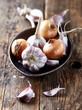 Garlic bulbs and onions