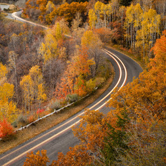 Long exposure of car driving on road through autumn leaves