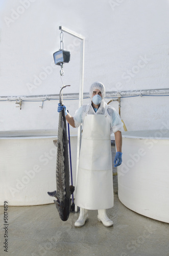 Hispanic man holding sturgeon in factory