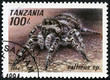 stamp printed in Tanzania shows image of a salticus sp