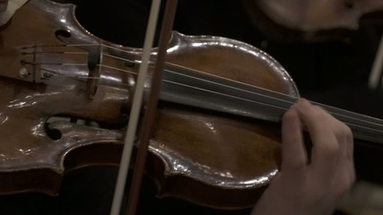 Violin player close up