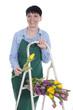 Glückliche ältere Frau mit Tulpenstrauss hält Daumen hoch