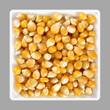 Popcorn seed, corn