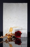 Old vintage paper page and wilted rose reflected poster
